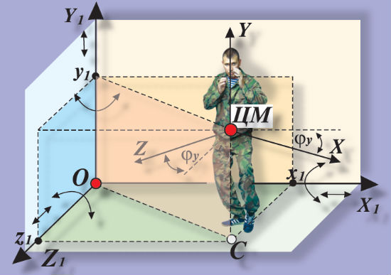 Биомеханическая модель, в позе, соответствующей боевой стойке
